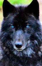 Tundra by Midmoonwolf