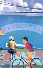DESTINY LOVE by imperfectiondarck