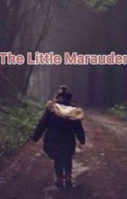The Little Marauder by remmyesirius_ri