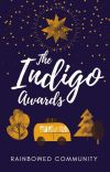 Indigo Awards! cover