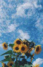 🌹 ┊ ❝ [🇪🇱 🇩🇮🇦🇷🇮🇴 🇩🇪 🇷🇮🇺🇸 ] ❞ by -Ilove_riusplay-