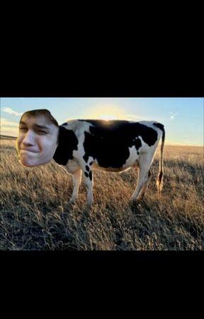 Mattheo il vacco by un_fungh3tto_UwU