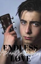 Endless Love   Aidan Gallagher Y Tú by MeliiiiMon