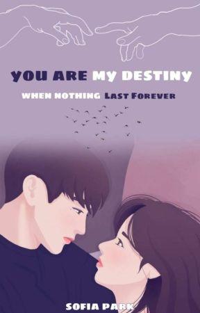 You Are My Destiny by SofiaPark99
