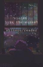 purple, like the sunset (hitoshi shinsou x reader) by venomouslyMelodious