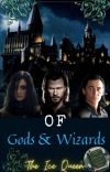 Of Gods and Wizards cover