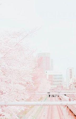 ━━ 𝐌𝐘 𝐒𝐇𝐈𝐅𝐓𝐈𝐍𝐆 𝐄𝐗𝐏𝐄𝐑𝐈𝐄𝐍𝐂𝐄 ෆ. by hslloween