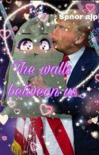 The walls between us : donald trump x Reader oneshots  by Toji-simp