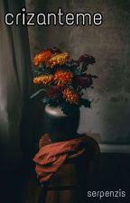 crizanteme de _serpenzis