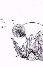 Dandelions  by eyooowwwww