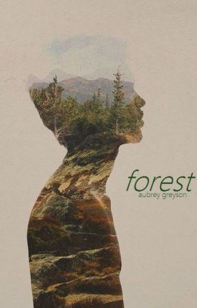 forest by havens