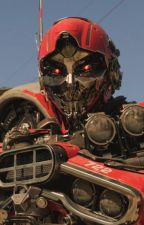 Shatter (Transformers), x Male Reader ~New Story~ by Jet_The_Knight