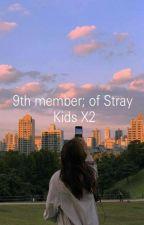9th member; of Stray Kids x2 by cuty-minmin