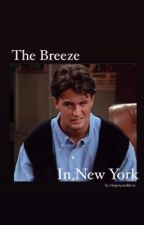 The Breeze in New York  by i1hope1you1like1it