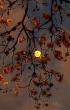contos de uma infinita noite   poemas, de loonacoaster