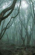 יער המוות by noaitsme