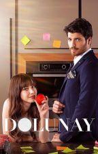 Dolunay by h1011206