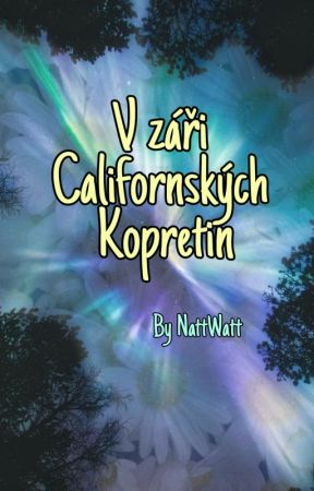 V záři Californských Kopretin by NattWatt