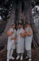 ❮Ludic❯     ❮Graphics Shop❯ -CFCU by -anaxtaetic-