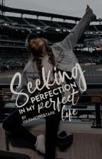 Seeking Perfection in my Perfect life by HarmioneStark