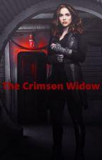 Crimson Widow //Steve Rogers/Bucky Barnes// by alexabright6
