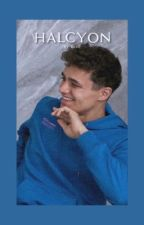 HALCYON | 𝘭𝘢𝘯𝘥𝘰 𝘯𝘰𝘳𝘳𝘪𝘴, 𝘪𝘯𝘴𝘵𝘢𝘨𝘳𝘢𝘮 by crxscxntmoon