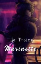 Je t'aime Marinette by isa_couff_aine