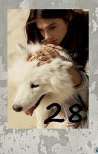 28 by PavelBourdan