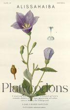 Platycodon [Sans X Reader] by alissahaiba