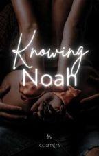 Knowing Noah by jcbbrsmith