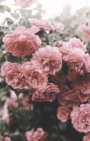 Chaos Rose by GardeniaWhite9824