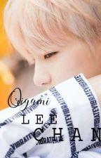 Origami    Lee Chan    by Seventeenisum