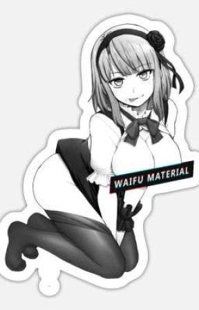 Mis Waifus by RoRoAct5Requiem