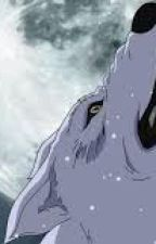 A Werewolf Boy: After Kim Su-ni's Gone oleh dkssdlek06_
