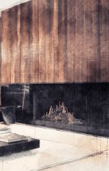 Modern linear fireplaces by archifire