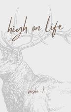 high on life by sooshanoodel