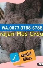 WA 0813-9313-9465, Pengepul Ijuk Untuk Atap Magelang by jualijukhitammurah