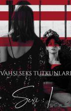 fireezq tarafından yazılmış Vahşi Seks Tutkunları Serisi 1  • Liskook adlı hikaye