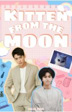 KITTEN FROM THE MOON by hills_fam
