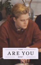WHERE ARE YOU NOW? (Matthy/bankzitters fanfiction) door RomyxMC