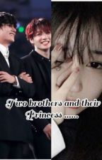 2 brothers and their princess  by btsbrostories