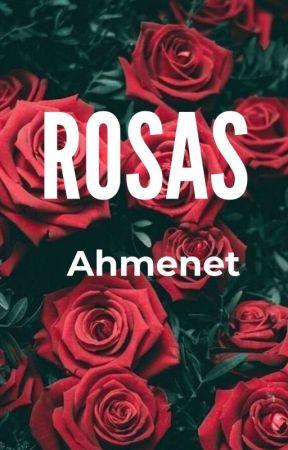 Rosas.  by Ahmenet