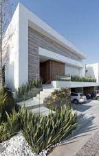Casa Emocional, de oliver_gatinho17