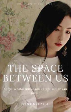 The Space Between Us || mingyu, eunseo by binjinpeach