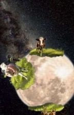 Are there cows on the moon? by urlocallibraryfairy