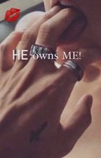 He owns me H.S by Stylinson288289