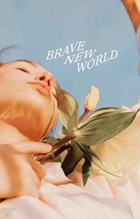 Brave New World ━━ DREAM SMP by prettyprivileges