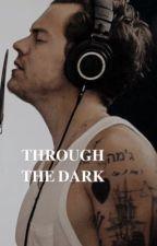 through the dark   h.s by harryandhishairclip