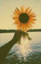 You are my sunflower autorstwa shakedmyheadxx