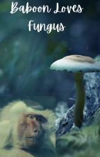 Baboon Loves Fungus by des0003oreos
